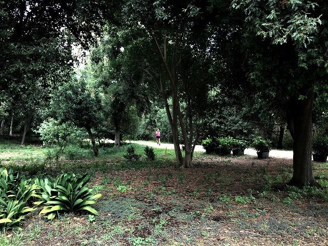 ペドラルベス宮の庭でピクニック_b0064411_07341922.jpg