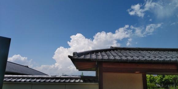 富山が好きになりました。_d0212522_17520362.jpg