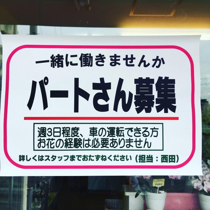 定員増加しました!〜矢野公民館  秋の花寄せ植え講座〜_a0152665_14553914.jpeg