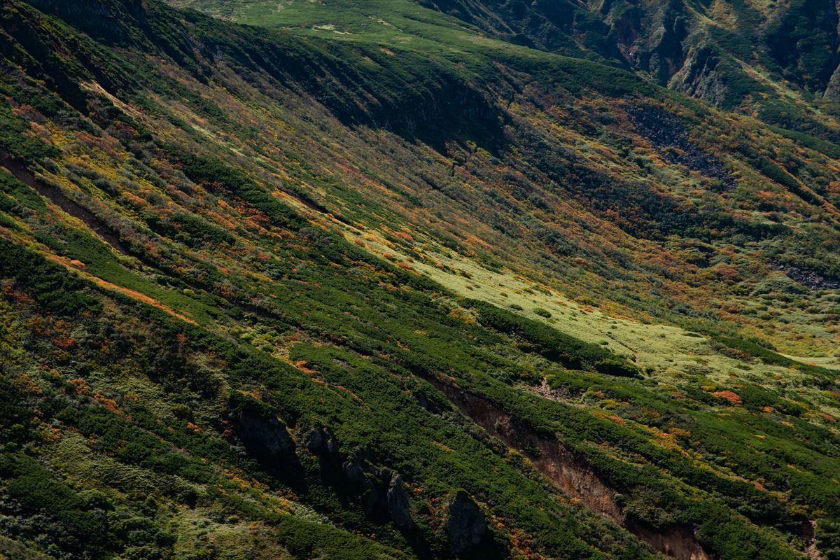 【後編】アッセンブル!( ✧Д✧) カッ!! 未踏の上ホロカメットク山~十勝岳のルートを繋いだ!_b0281366_19575316.jpg