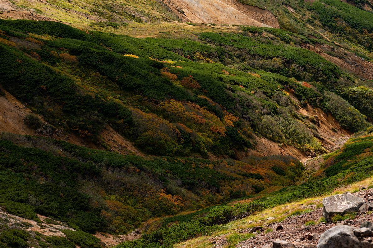 【後編】アッセンブル!( ✧Д✧) カッ!! 未踏の上ホロカメットク山~十勝岳のルートを繋いだ!_b0281366_19595082.jpg