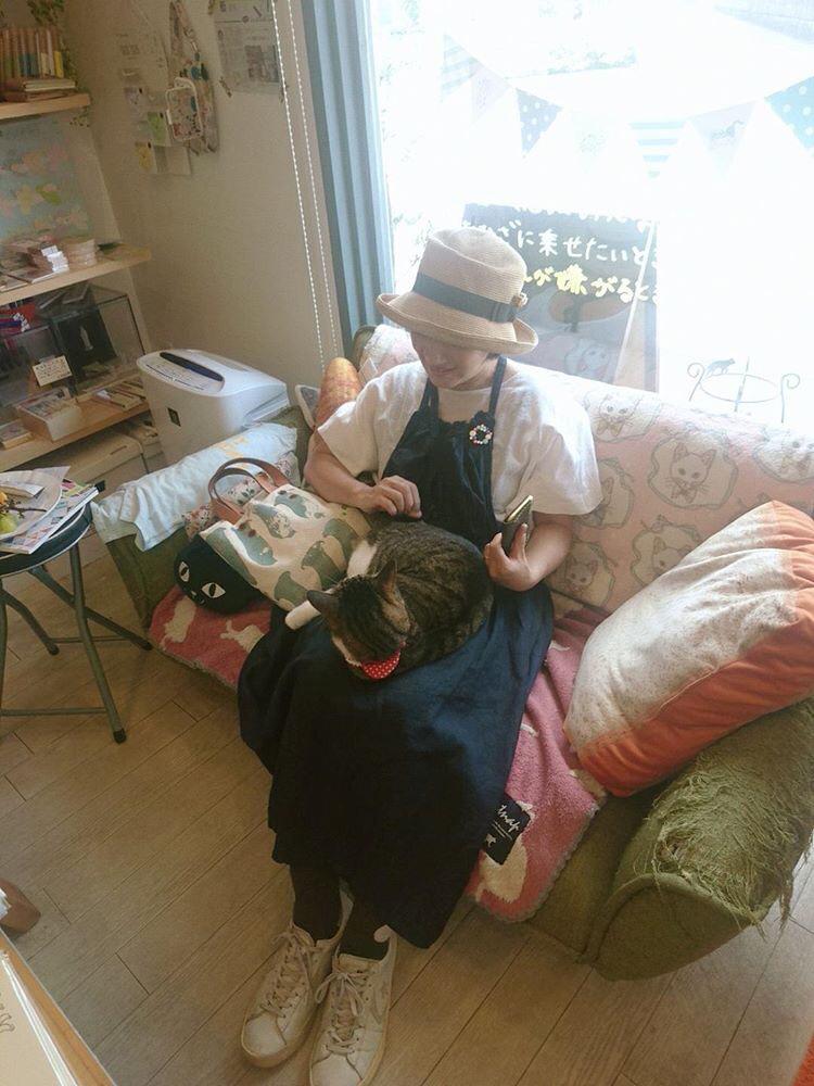 セレクトショップnёcoさんと白髪撲滅とブンゾーとcoRRierさんと我が家のドライフラワー_e0404693_21252324.jpg