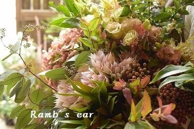 切花の苗も♪_e0128909_11285688.jpg