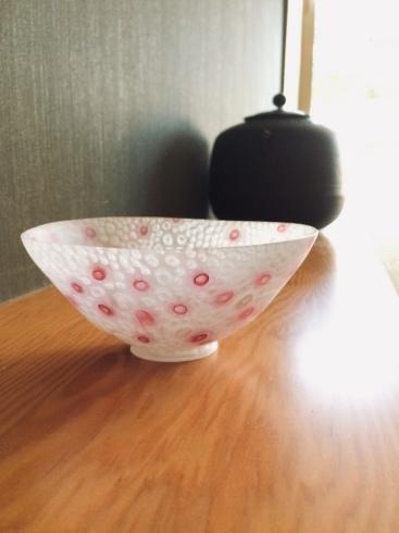 京都・ギャラリーにしかわ・photogenic展_f0206741_14512549.jpeg