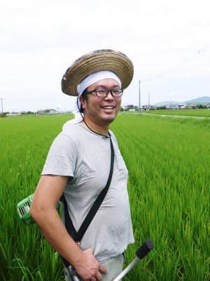 無農薬栽培のひのひかり100%使用の『米粉』おかげさまで売れてます!令和元年度のお米も元気に成長中!_a0254656_17402851.jpg
