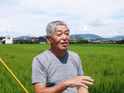 無農薬栽培のひのひかり100%使用の『米粉』おかげさまで売れてます!令和元年度のお米も元気に成長中!_a0254656_17503143.jpg