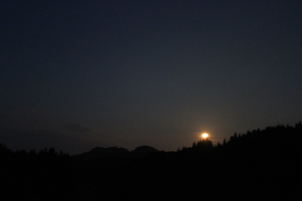 お月様七変化 Ⅰ_a0174458_23521617.jpg