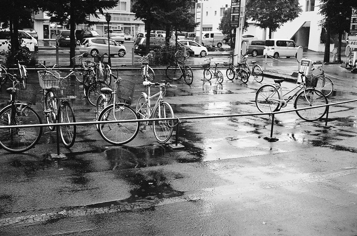 札幌の秋雨と千葉県の台風被害と無策政権_c0182775_12335153.jpg