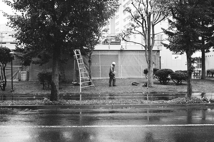 札幌の秋雨と千葉県の台風被害と無策政権_c0182775_12361016.jpg