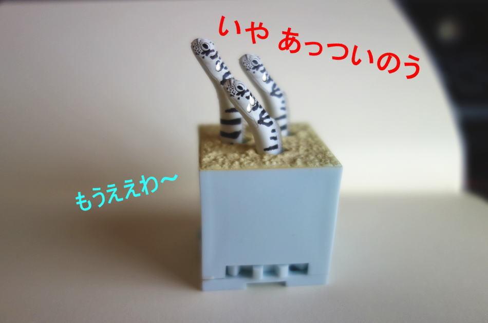f0153497_17172094.jpg