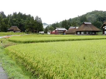 荻ノ島集落が「大人の休日倶楽部」に掲載されました。_c0195909_10520488.jpg