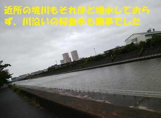 f0121712_15080975.jpg