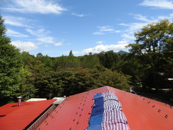 今週末の天気と気温(2019年9月12日):秋本番!最低気温12℃ほど_b0174425_22160218.jpg