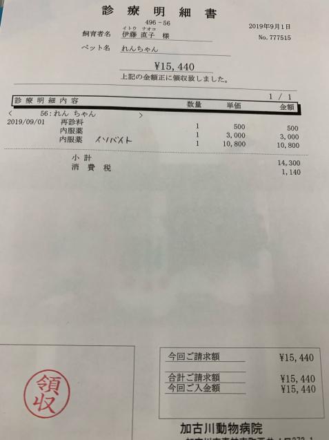 れんちゃん医療費の収支報告など_d0355333_09401668.jpg