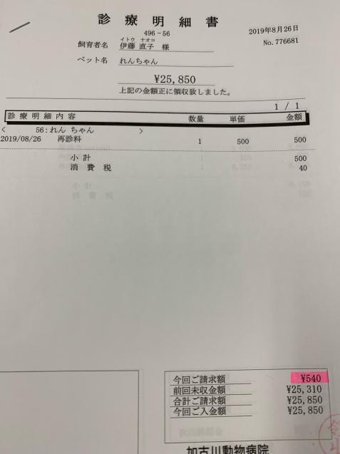 れんちゃん医療費の収支報告など_d0355333_09465312.jpg