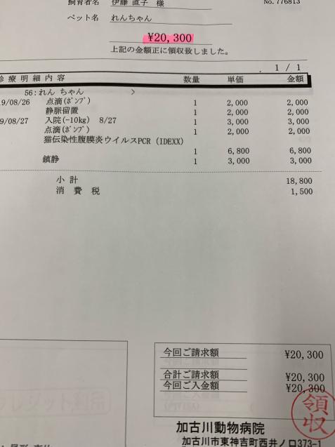 れんちゃん医療費の収支報告など_d0355333_09484307.jpg