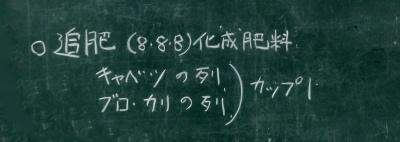 d0111439_19522284.jpg