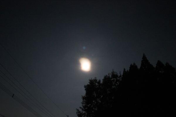 お月様七変化 Ⅰ_a0174458_00004248.jpg