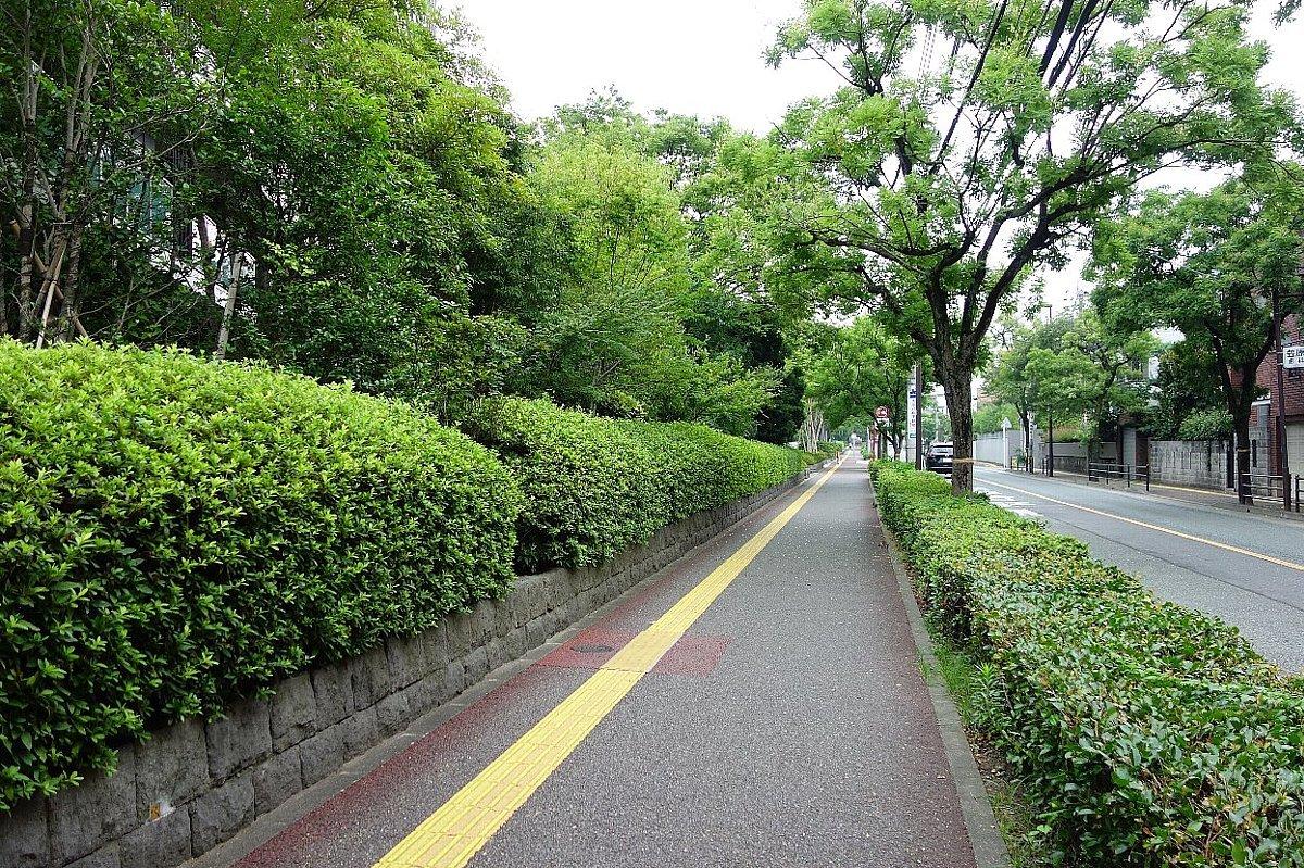福岡市の浄水通りから平尾へ_c0112559_10124451.jpg