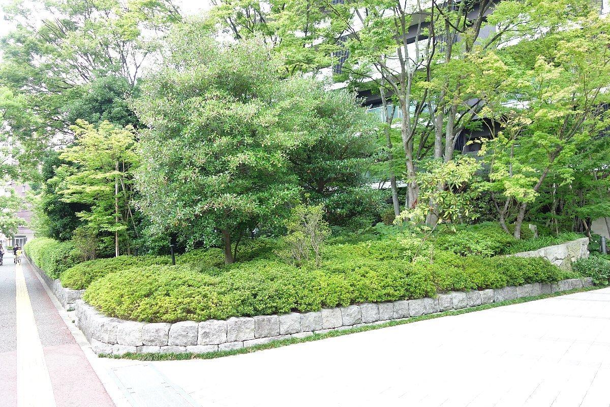 福岡市の浄水通りから平尾へ_c0112559_10180353.jpg