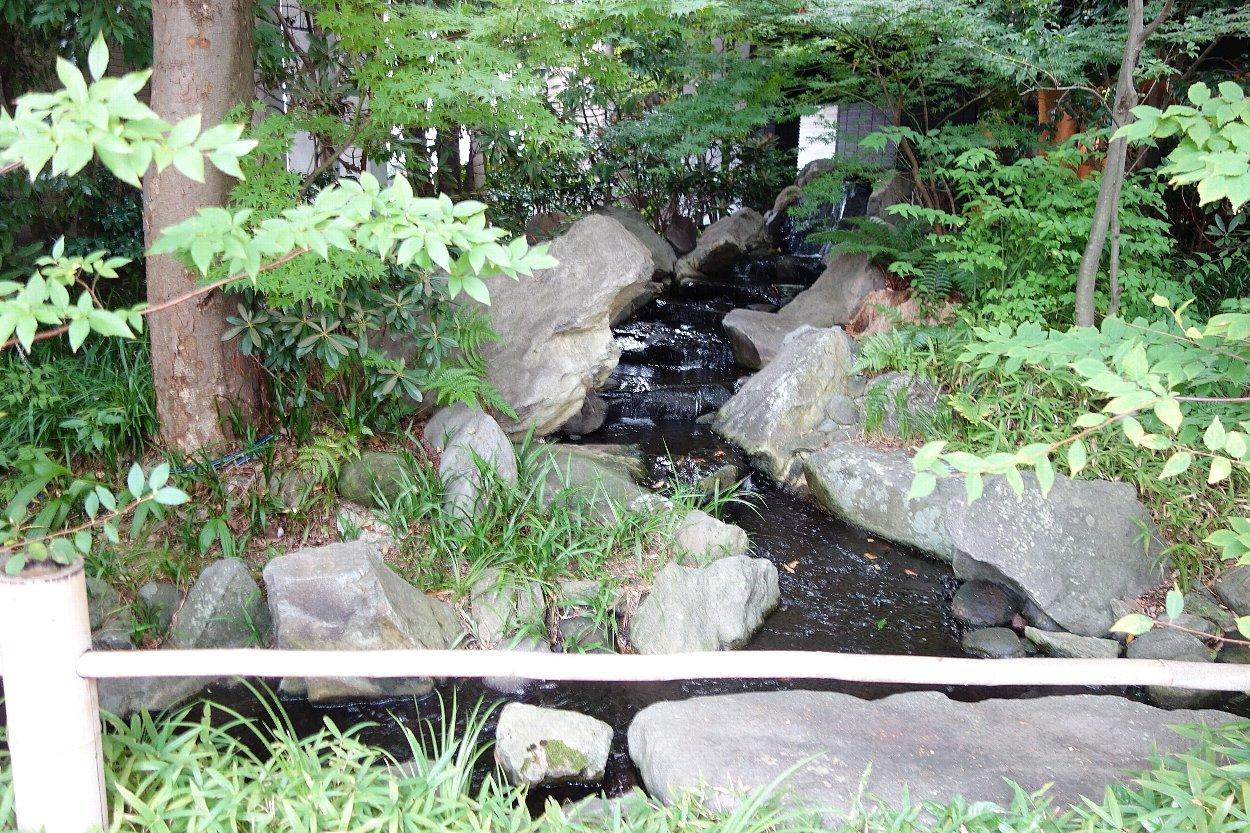 福岡市の浄水通りから平尾へ_c0112559_10191195.jpg