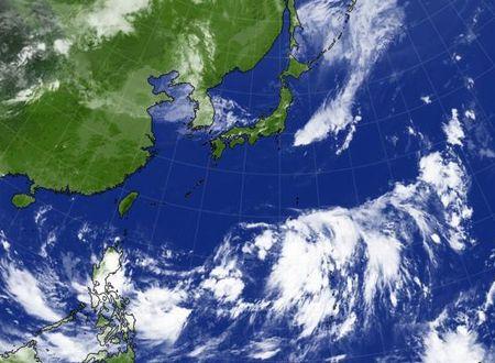 台風のたまご (・_・;)_c0139375_13171850.jpg