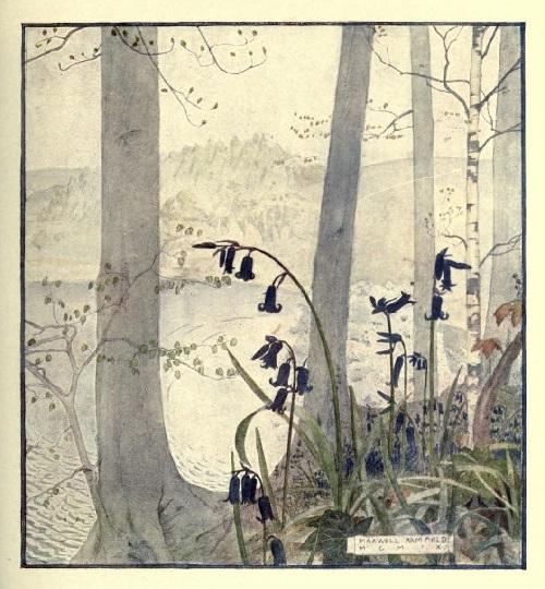 Maxwell Armfield画:The flower book①_c0084183_11091662.jpg