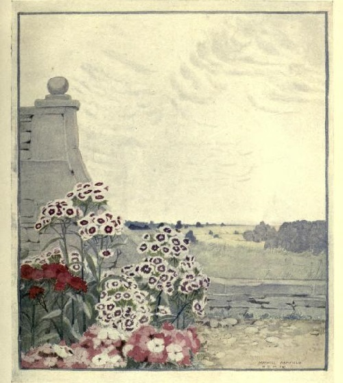 Maxwell Armfield画:The flower book②_c0084183_19270938.jpg