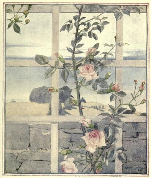 Maxwell Armfield画:The flower book②_c0084183_19273606.jpg