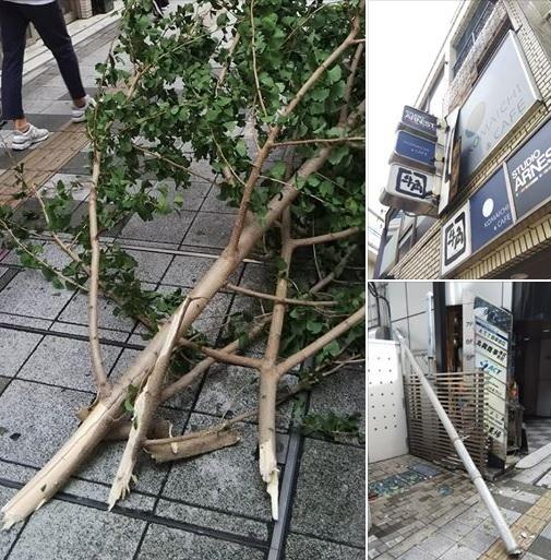 台風被害_c0092197_15475426.jpg