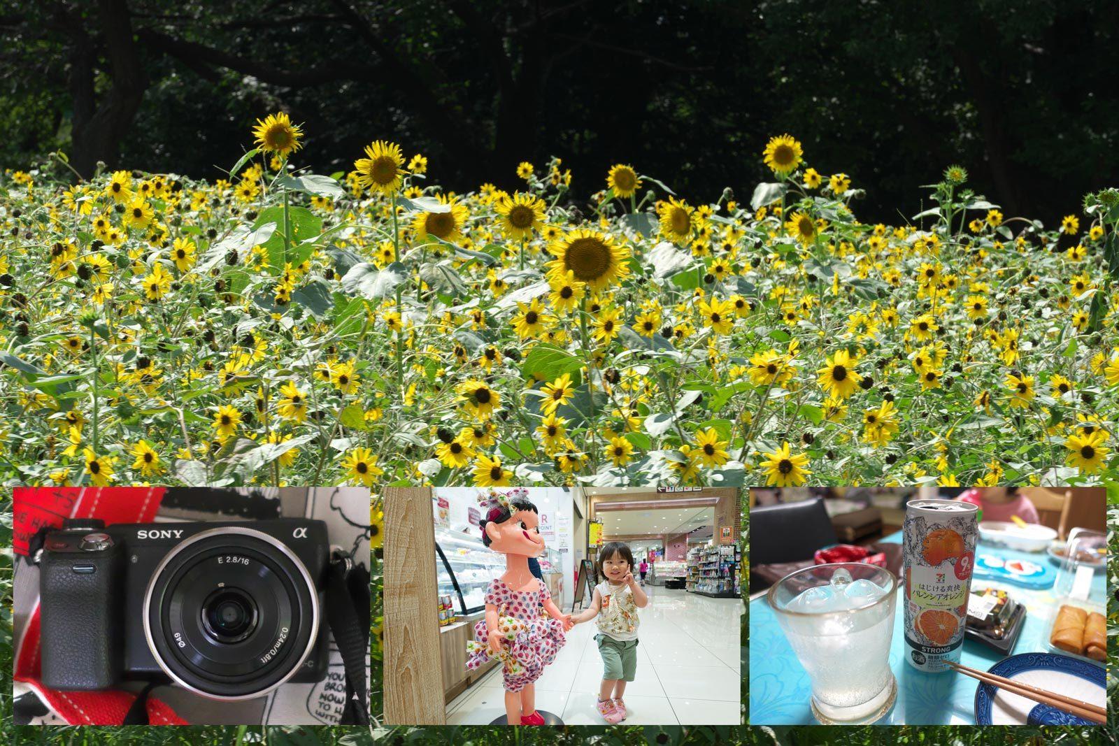 一瞬の夏休み_a0271402_08094393.jpg