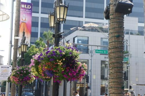 【ロサンゼルス旅行⑯ ビバリーヒルズ*お気に入りのキッチン・インテリアショップ】_f0215714_16305277.jpg