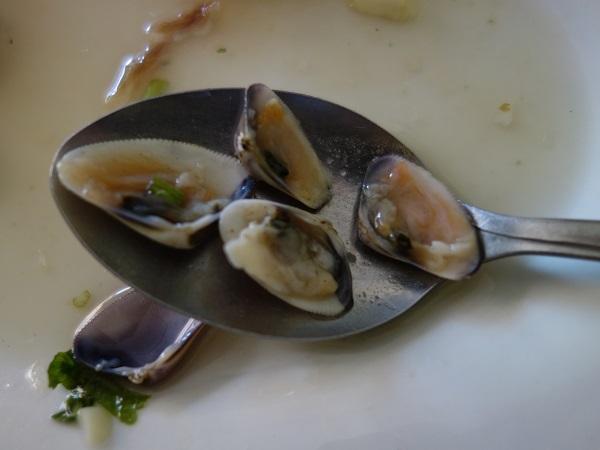 チクラヨのホテル近くで貝入りのセビーチェを食べてみた_c0030645_05321791.jpg