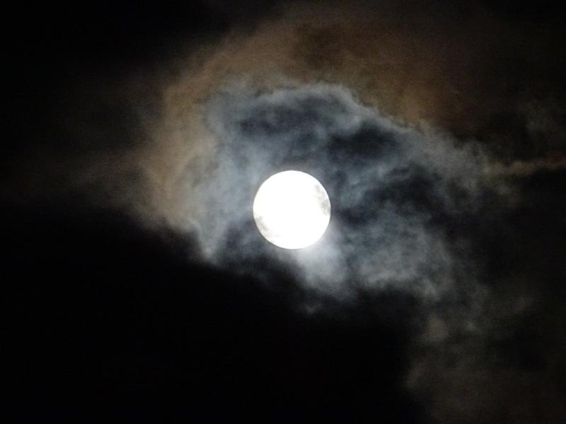 中秋の名月「観月会」・・・孝子の森_c0108460_23490678.jpg