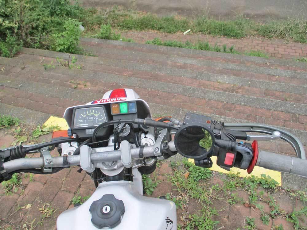 セロー225Wの練習場所である裏山のプチ林道が全滅・・・(T_T)_c0086965_17594006.jpg