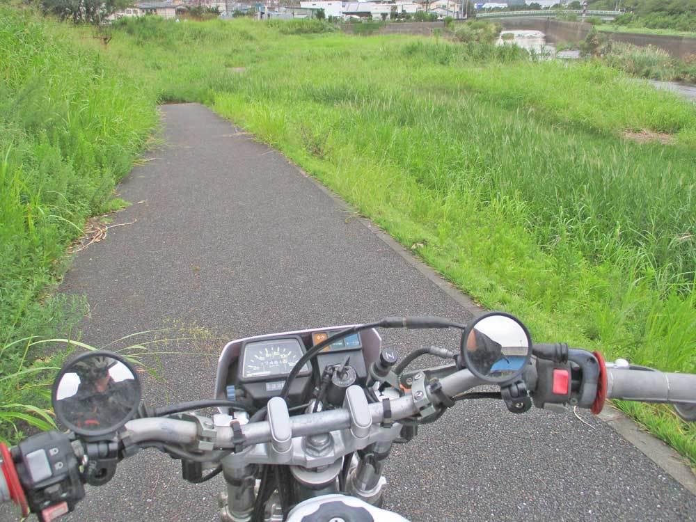 セロー225Wの練習場所である裏山のプチ林道が全滅・・・(T_T)_c0086965_17594008.jpg