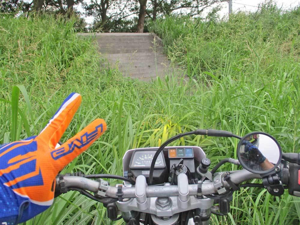 セロー225Wの練習場所である裏山のプチ林道が全滅・・・(T_T)_c0086965_17594084.jpg