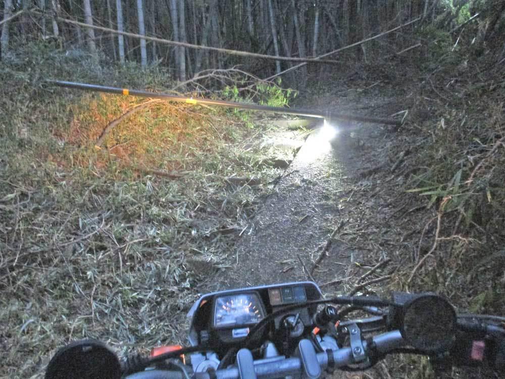 セロー225Wの練習場所である裏山のプチ林道が全滅・・・(T_T)_c0086965_18103779.jpg