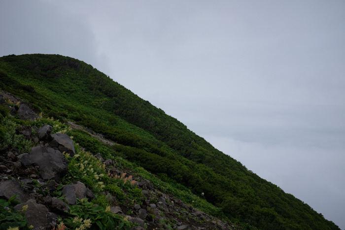 北海道11日目-1 羊蹄山登山_b0339488_19240658.jpg