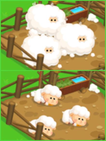 🐏ブラウンファームの羊🐑_f0143188_09535838.jpg