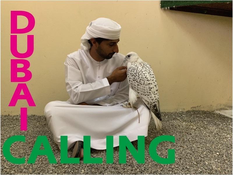 【Dubai Calling ドバイコーリング③】_d0083692_07225209.jpeg