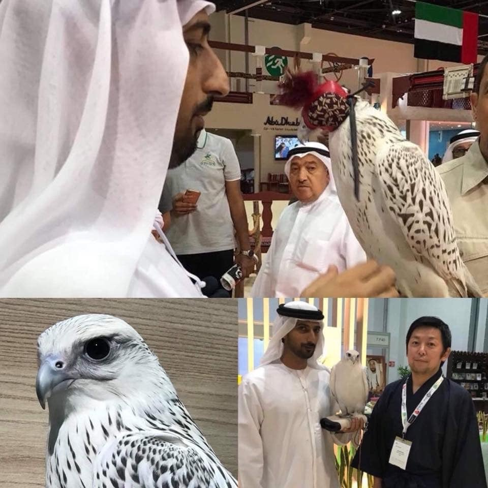 【Dubai Calling ドバイコーリング③】_d0083692_07240193.jpeg