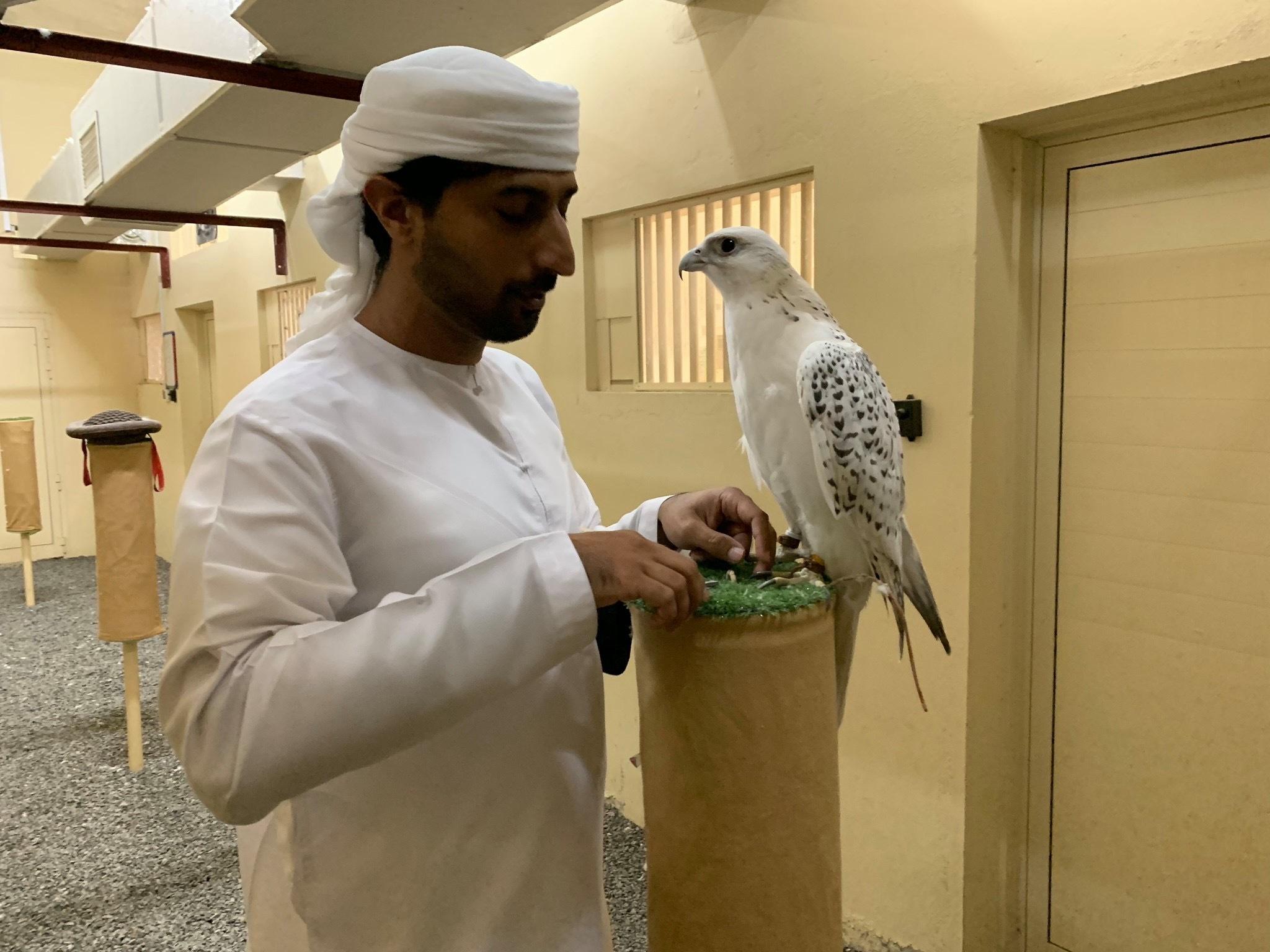 【Dubai Calling ドバイコーリング③】_d0083692_07264619.jpeg
