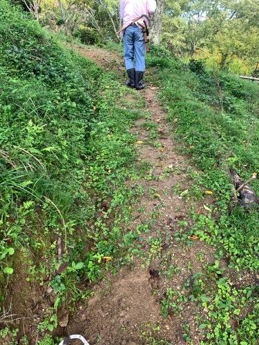 今年も吉野山の道造りをしてきました_e0154524_08435842.jpg