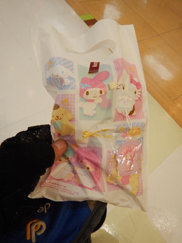 【速報】俺氏、新潟の街にて『自分に必要ない物』を買ってしまう…。_b0136045_19164684.jpg