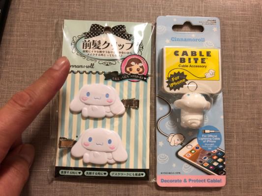 【速報】俺氏、新潟の街にて『自分に必要ない物』を買ってしまう…。_b0136045_19331635.jpg