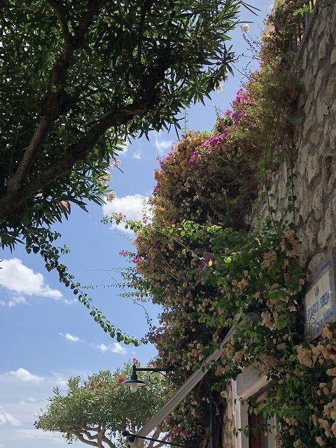 *イタリア ピサの斜塔~   *_e0159050_20251747.jpg
