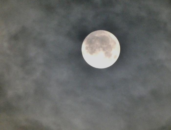 中秋の名月(十五夜)  2019-09-17 00:00  _b0093754_22394876.jpg