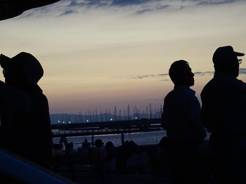 「ウミホタルウオッチング」 in  せんなん里海公園潮騒ビバレー前砂浜_c0108460_22381517.jpg