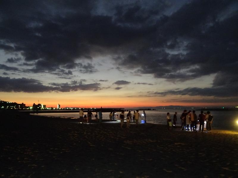 「ウミホタルウオッチング」 in  せんなん里海公園潮騒ビバレー前砂浜_c0108460_22401613.jpg